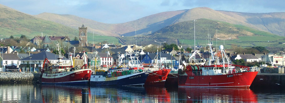 Dingle Marina