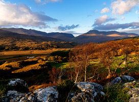 National Park Killarney