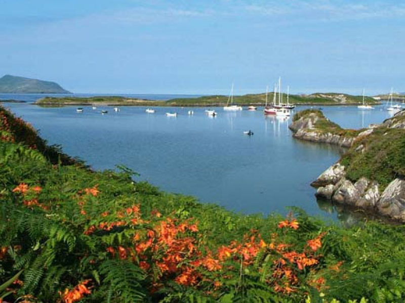Derrynane Harbour
